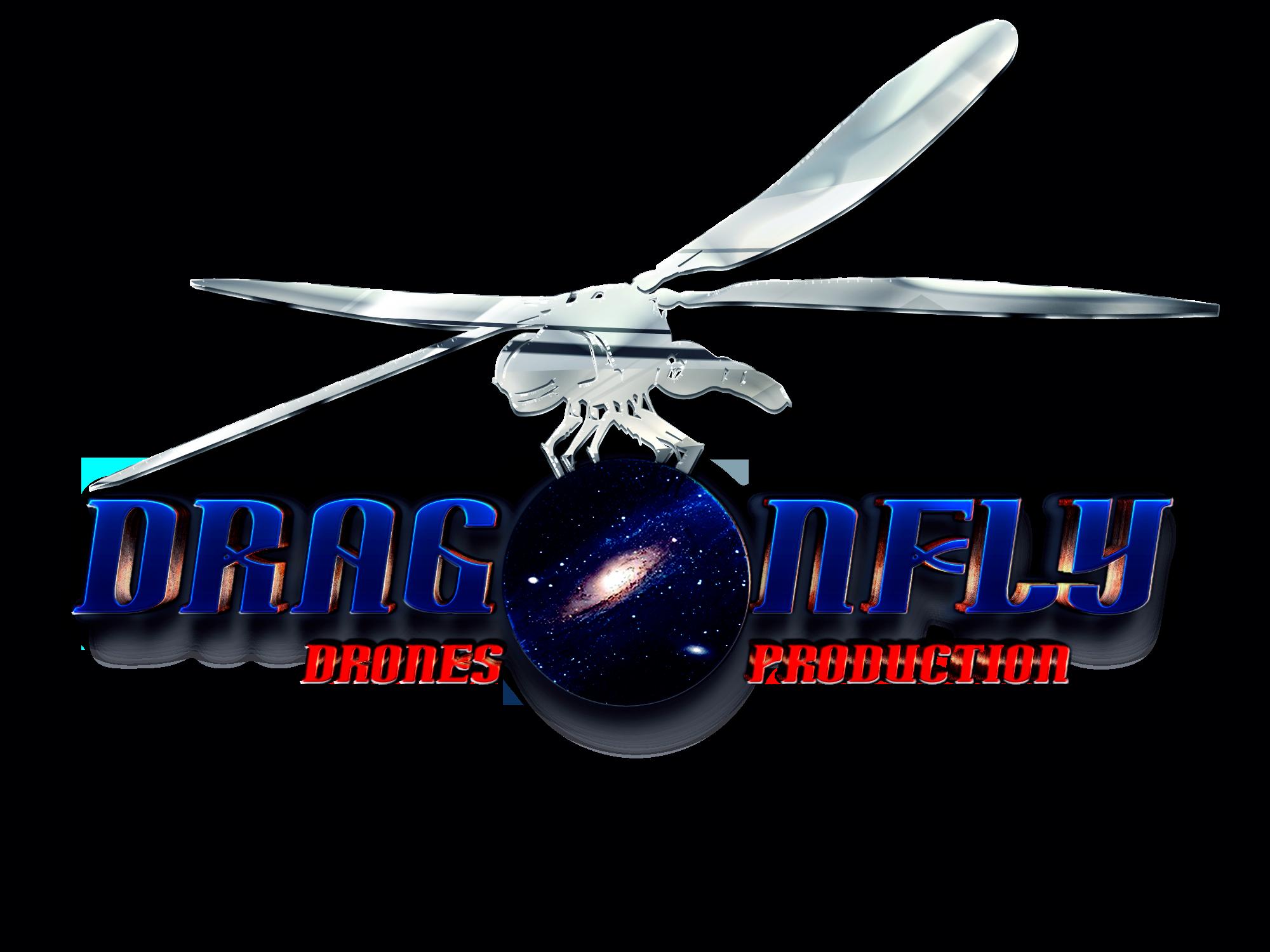 Dragonflytransparency